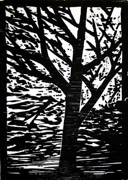 Winter Tree, woodcut